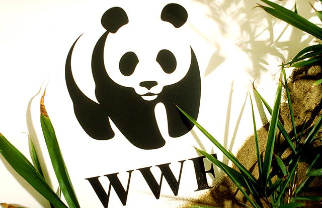 640_WWF Panda